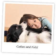 Collies and Kids